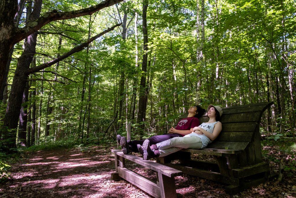 Peter's Woods Provincial Park
