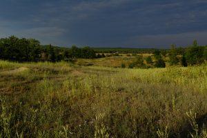Hazel Bird Nature Reserve